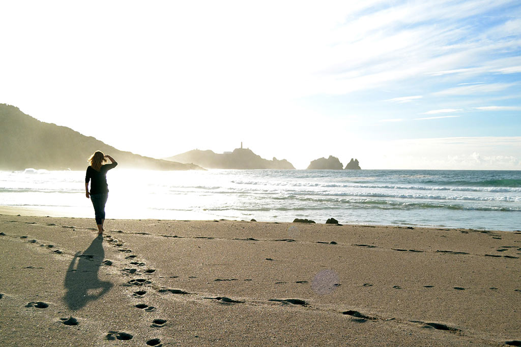 Beach Hopping California Redwood Coast Fern Hook Vacation Cabins