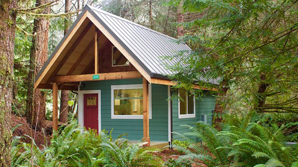 Contact Us Fern Hook Vacation Cabins Redwood Coast
