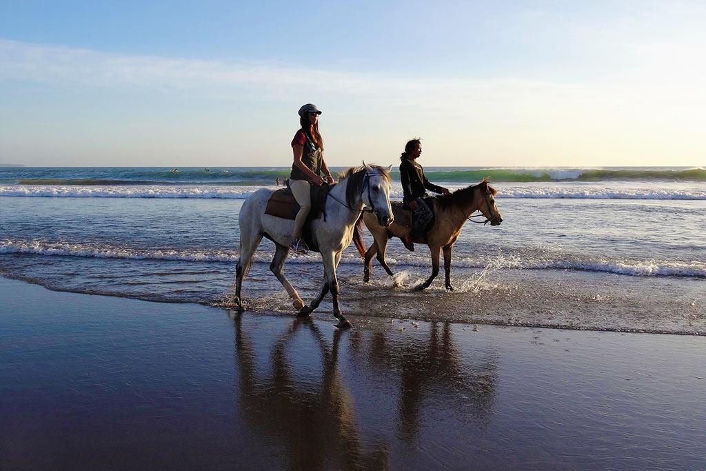 Horse Back Riding Redwood Coast Fern Hook Vacation Cabins